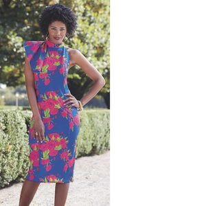 Brand new Ashton dress sz 14